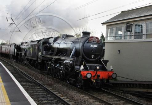 Steam train through South Tottenham